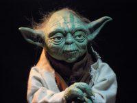 maître Yoda visage